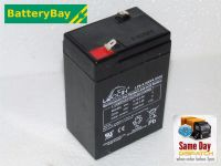 Leoch LP6-4.0 - Ride On Car Battery